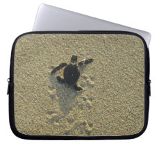 Green Turtle, (Chelonia mydas), hatchling Laptop Sleeve