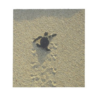Toddler & Baby themed Green Turtle, (Chelonia mydas), hatchling Notepad