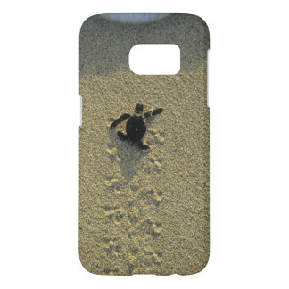 Green Turtle, (Chelonia mydas), hatchling Samsung Galaxy S7 Case