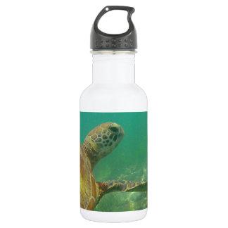 Green-turtle-Great-Barrier-Reef.JPG Water Bottle