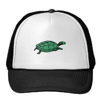 Green Turtle Trucker Hats
