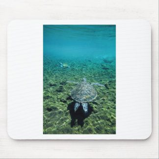Green turtle underwater Western Samoa Mouse Pad