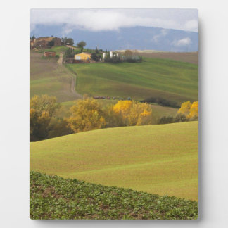 Green Tuscan Countryside Plaque