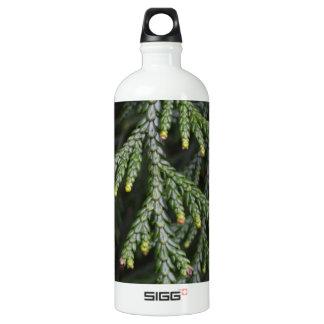 Green Twig Tree Aluminum Water Bottle
