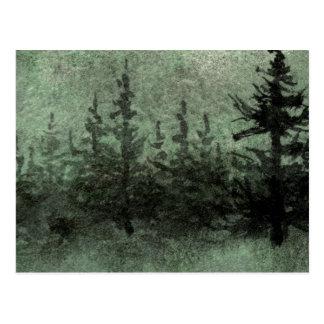 """Green Twilight"" Country Roads Postcard"
