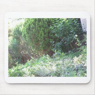 GREEN Unique Jungle Wild Garden  NewJersey NVN686 Mouse Pads