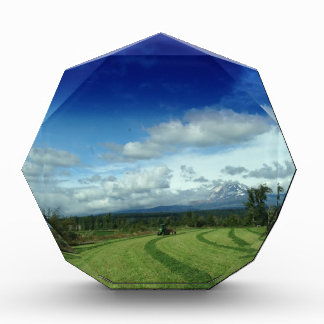 Green Valley Grass Acrylic Award