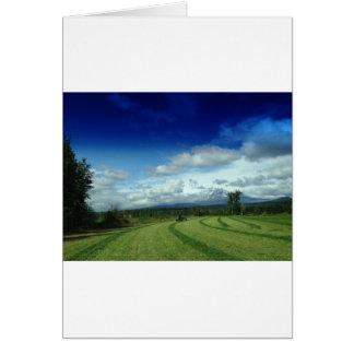 Green Valley Grass Card