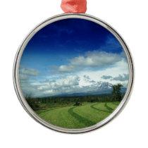 Green Valley Grass Metal Ornament