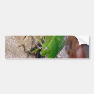 Green Vegetable Bug Bumper Sticker