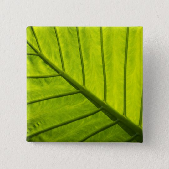 Green veined leaves of tropical foliage in 2 button