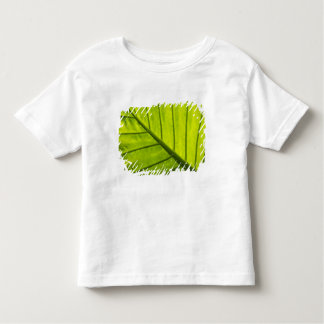 Green veined leaves of tropical foliage in 2 toddler t-shirt