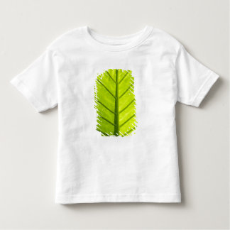 Green veined leaves of tropical foliage in toddler t-shirt
