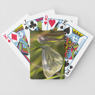 Green-veined White Butterfly Bicycle Playing Cards