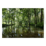 Green Venice Coulon France Note Card