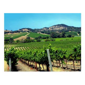 green vineyard postcard