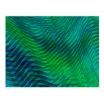 Green Voile Postcard