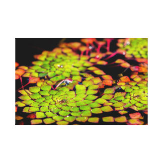 Green water flower canvas print