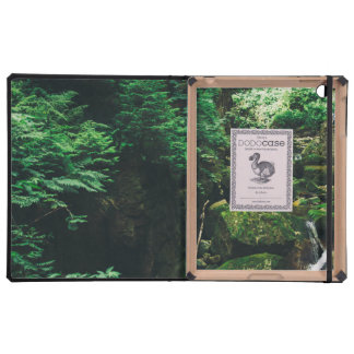 Green Waterfall Landscape, Nature Photograph Case For iPad