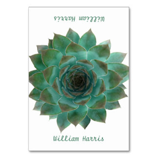 Green Wedding Succulents Tented Place Cards