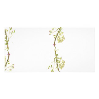 Green weeds on edges scan photo card template