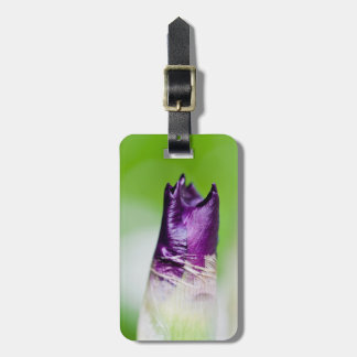 green welcomes purple luggage tag