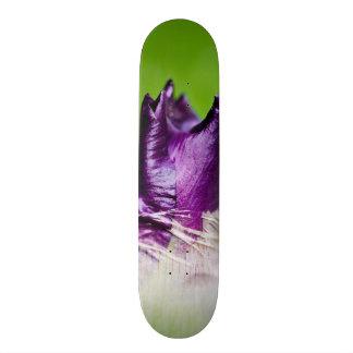 green welcomes purple skateboard deck