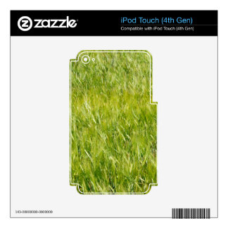 Green Wheat Field iPod Touch 4G Skins