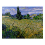Green Wheat Field with Cypress - Vincent van Gogh Print