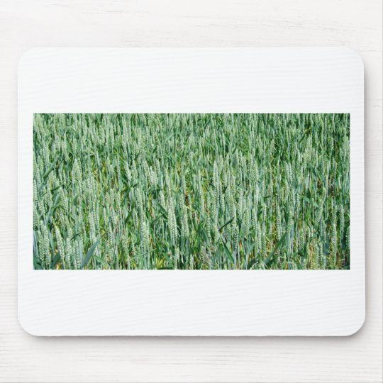 Green Wheat Mouse Pad