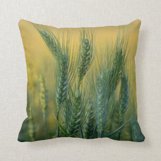 Green Wheat Pillow