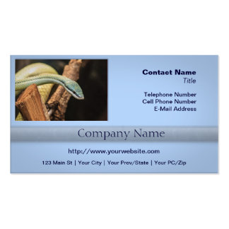 Green White and Yellow Snake Business Card