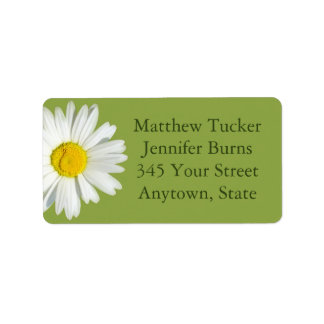 Green White Daisy Envelope Address Labels Custom Address Labels