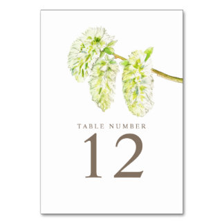 Green willow catkins watercolor art table numbers
