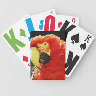 Green Winged Macaw Parrot Bird Close-Up Bicycle Playing Cards