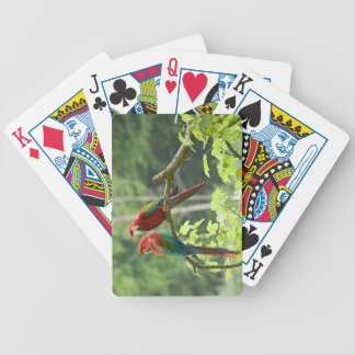 Green-winged Macaws Bicycle Playing Cards