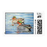 green winged teal postage