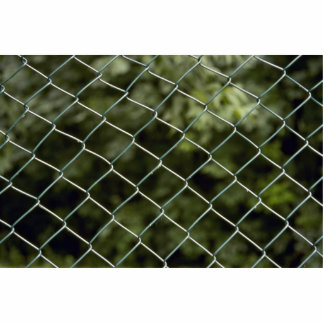 Green wire mesh fence photo sculpture