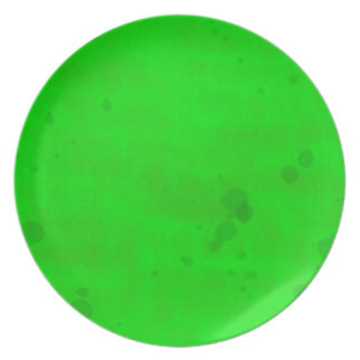 Green with water stains dinner plates