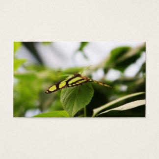 Green Wonder Business Card