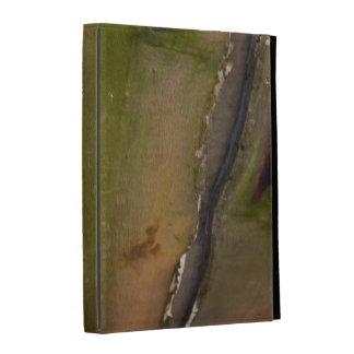 Green wooden planks folio iPad case