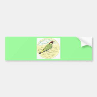 Green Woodpecker Car Bumper Sticker