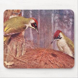 Green Woodpecker Couple Eating Ants Mousepad