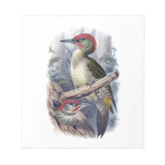 Green Woodpecker Notepad