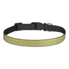Green & Yellow Pet Collar