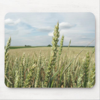 Green Young Wheat field Mouse Pad