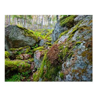 Greenary en las montañas postal