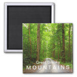 Greenbrier mountain road - Great Smoky Mountains 2 Inch Square Magnet