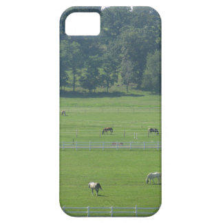 Greener Pastures iPhone SE/5/5s Case