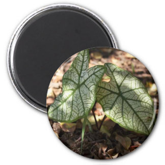 Greenery 2 Inch Round Magnet